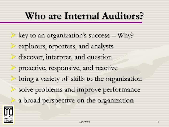 Who are Internal Auditors?