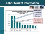 labor market information1