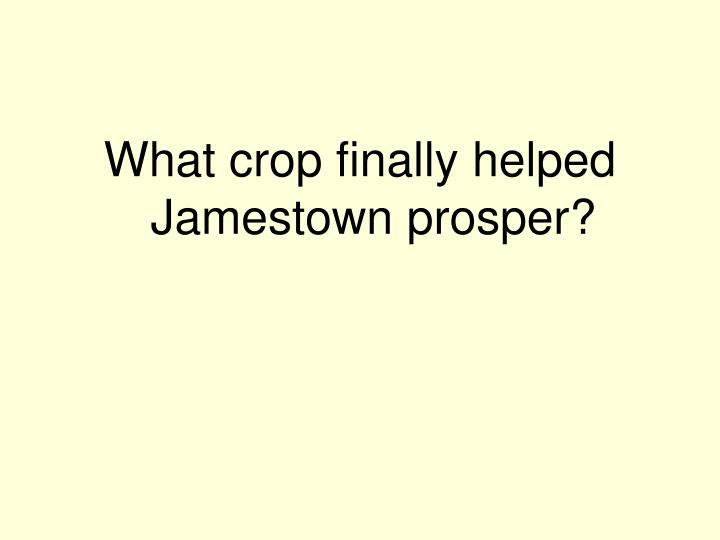 What crop finally helped Jamestown prosper?