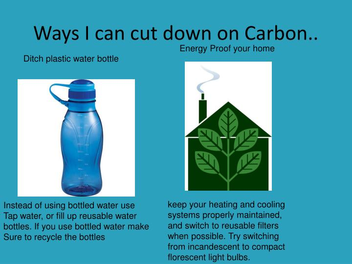 Ways I can cut down on Carbon..
