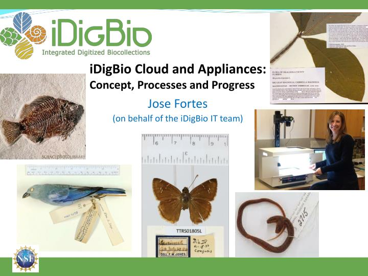 iDigBio Cloud and Appliances: