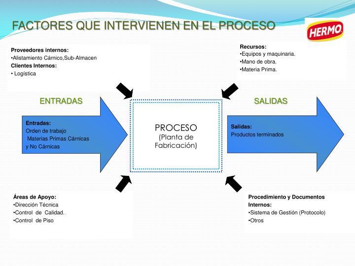 FACTORES QUE INTERVIENEN EN EL PROCESO