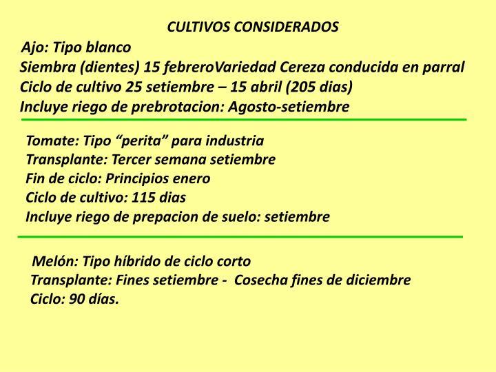 CULTIVOS CONSIDERADOS