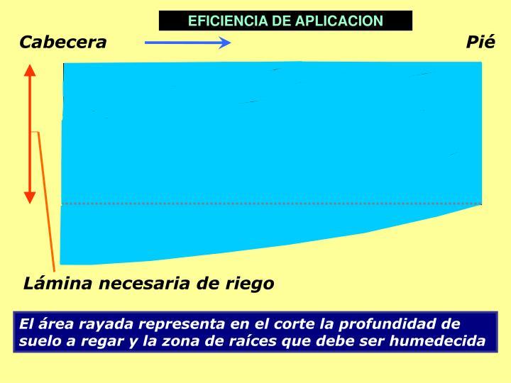 EFICIENCIA DE APLICACION