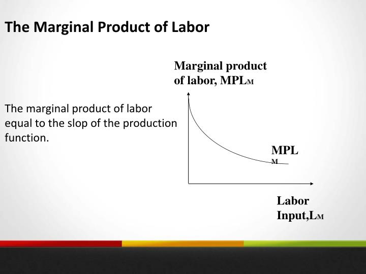 The Marginal Product of Labor