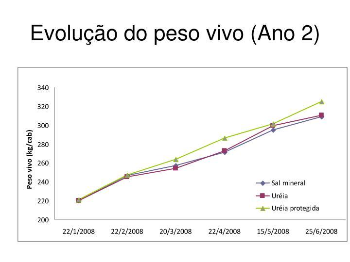 Evolução do peso vivo (Ano 2)