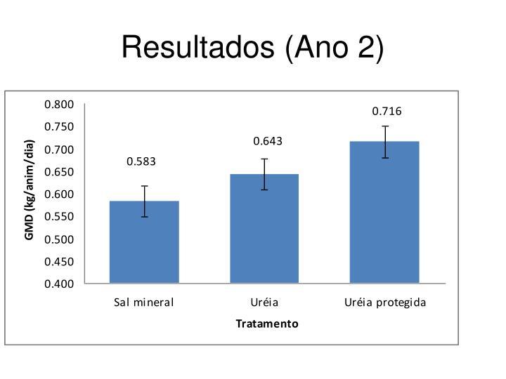 Resultados (Ano 2)