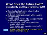what does the future hold uncertainty and opportunity for wqt