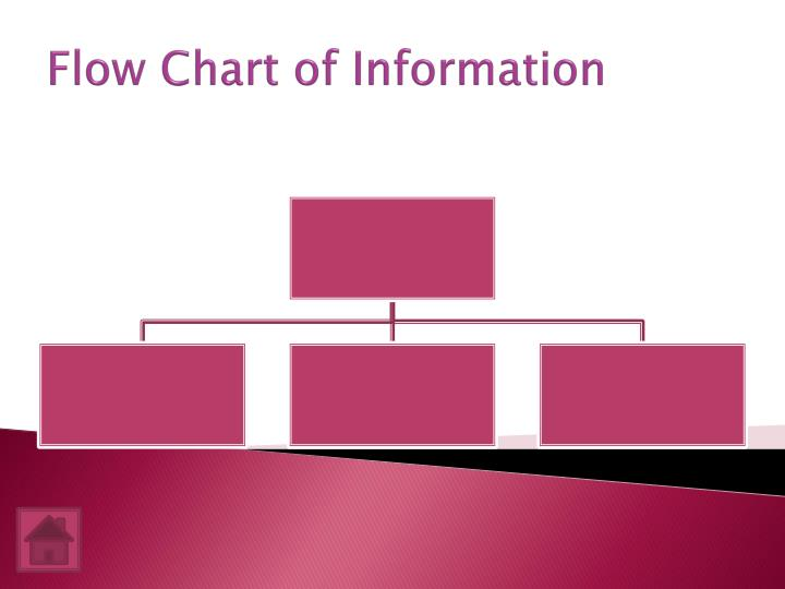 Flow Chart of Information