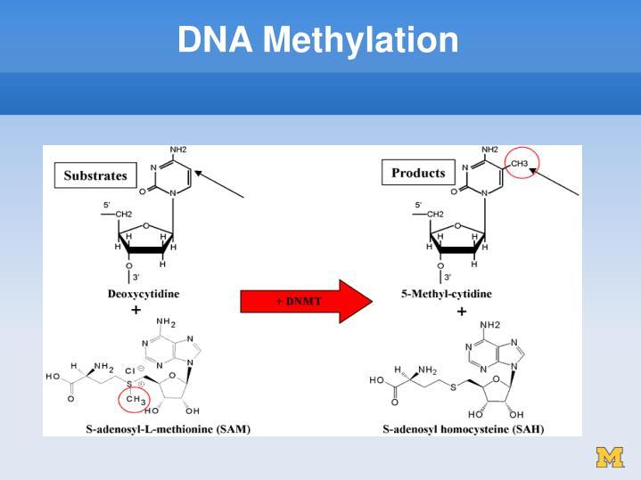 Watch Mitomycin video