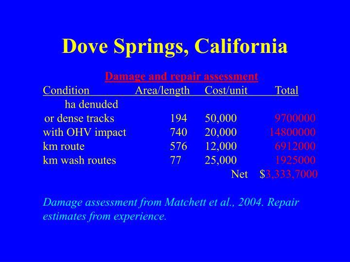 Dove Springs, California