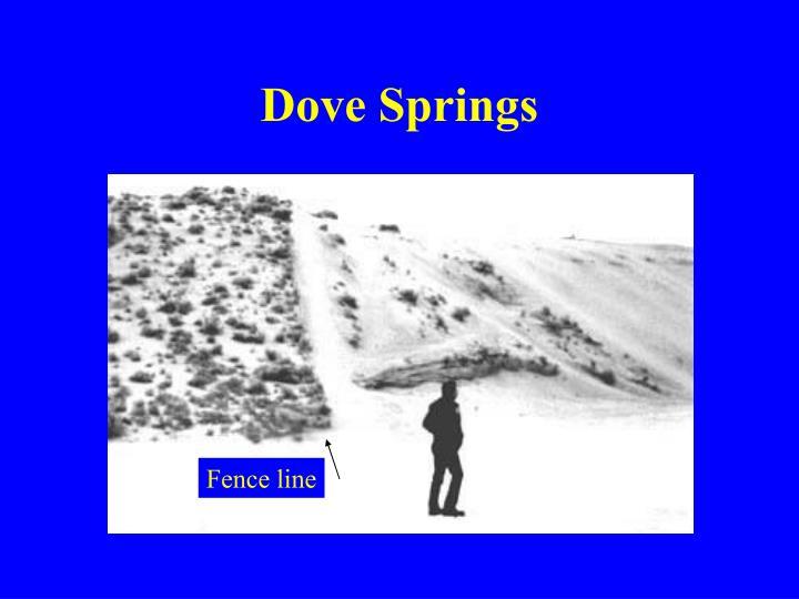 Dove Springs