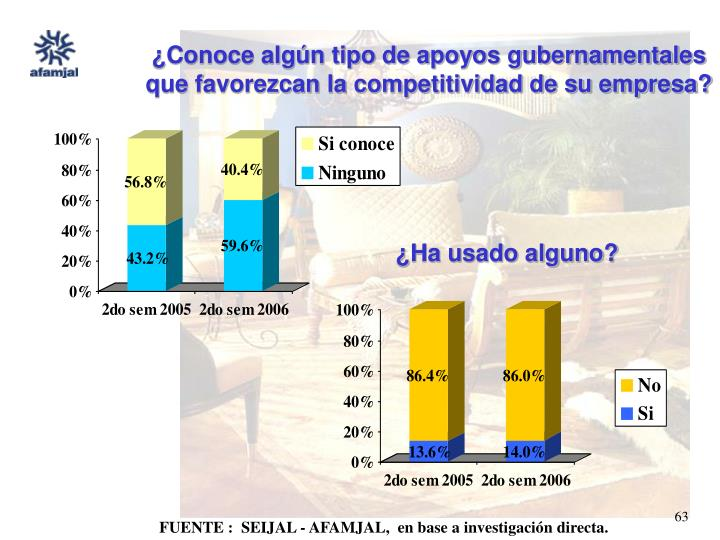 ¿Conoce algún tipo de apoyos gubernamentales que favorezcan la competitividad de su empresa?