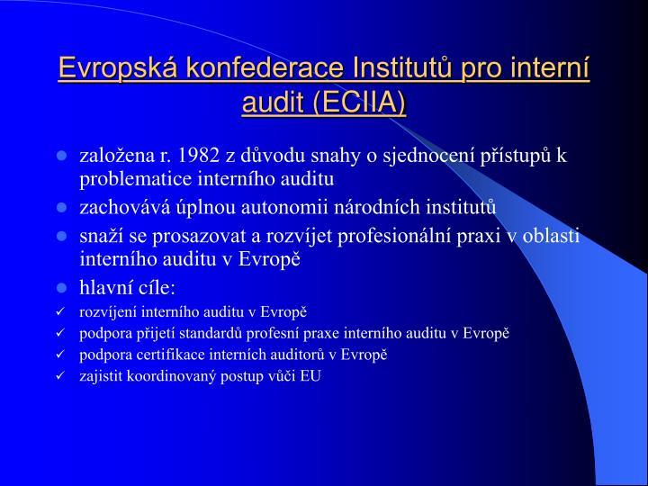 Evropská konfederace Institutů pro interní audit (ECIIA)