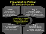 implementing prizes schematic overview