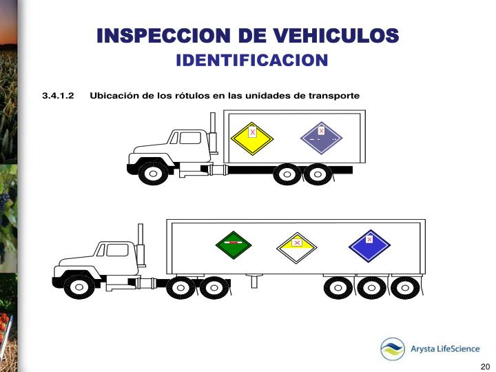 INSPECCION DE VEHICULOS