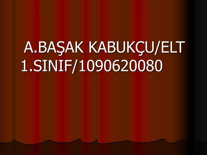 A.BAŞAK KABUKÇU/ELT 1.SINIF/1090620080