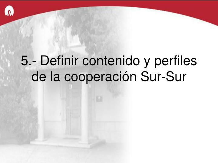 5.- Definir contenido y perfiles de la cooperación Sur-Sur