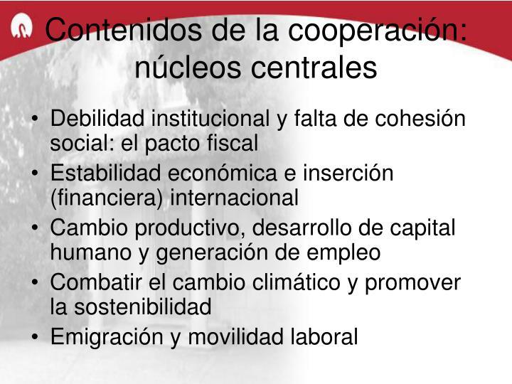 Contenidos de la cooperación: núcleos centrales