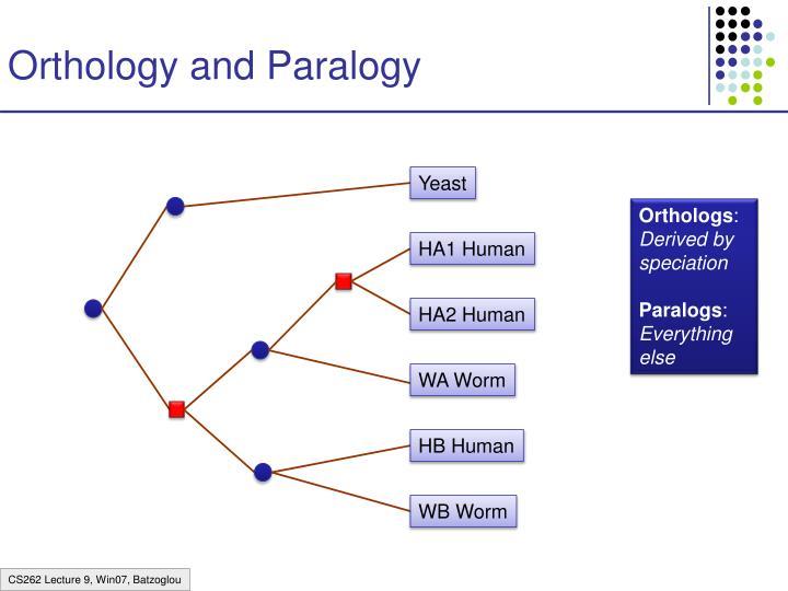 Orthology and Paralogy