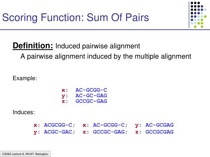 Scoring Function: Sum Of Pairs
