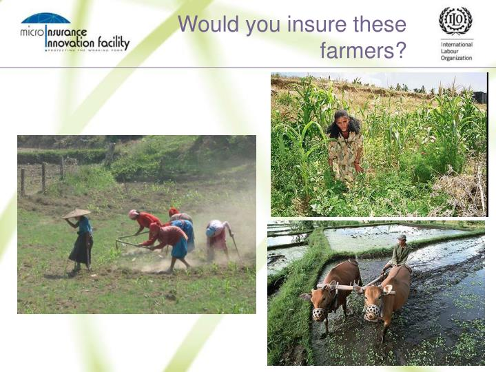 Would you insure these farmers?