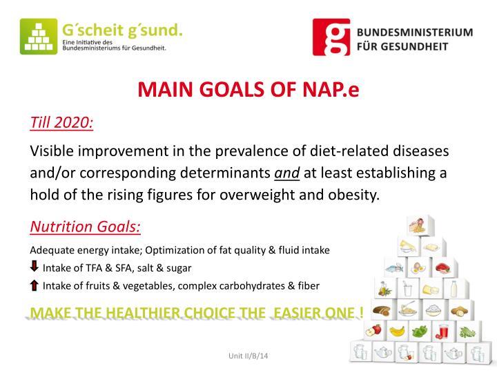 MAIN GOALS OF NAP.e