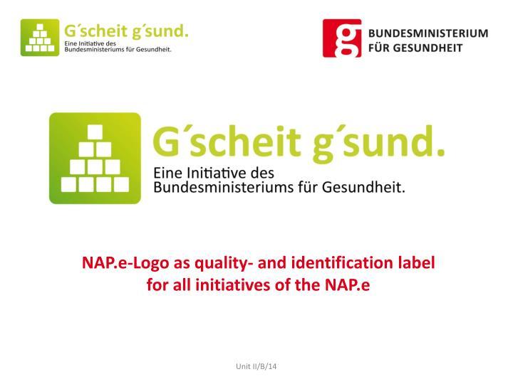 NAP.e-Logo