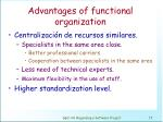 advantages of functional organization