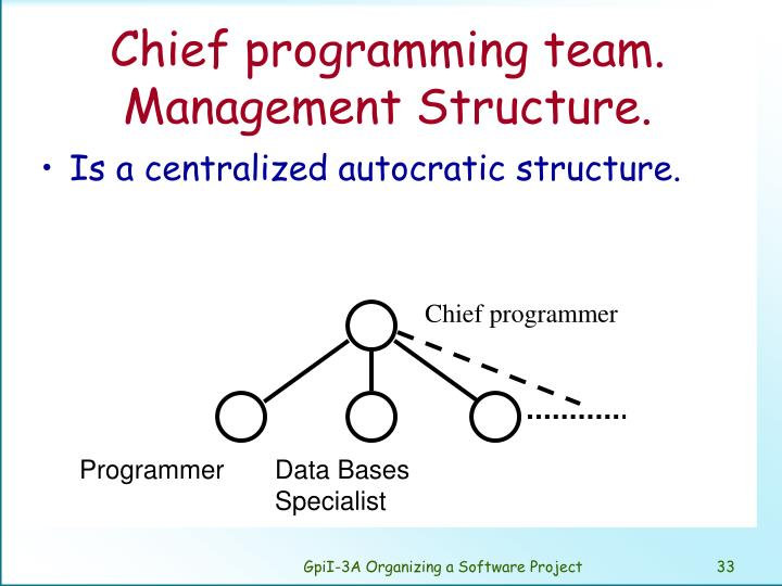 Chief programming team. Management Structure.