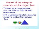 context of the enterprise structure and the project team1