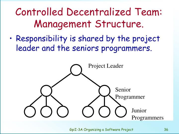 Controlled Decentralized Team: Management Structure.