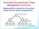 controlled decentralized team management structure
