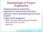 disadvantages of project organization