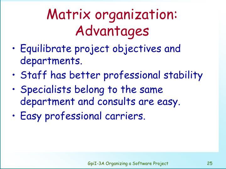 Matrix organization: Advantages
