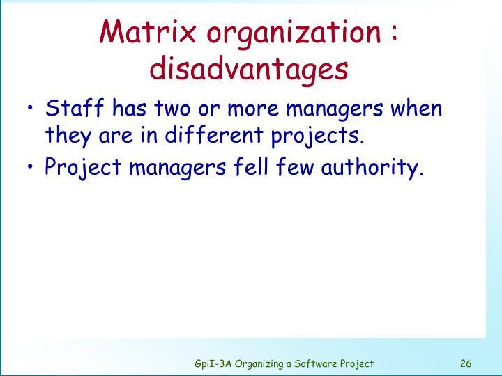 Matrix organization :
