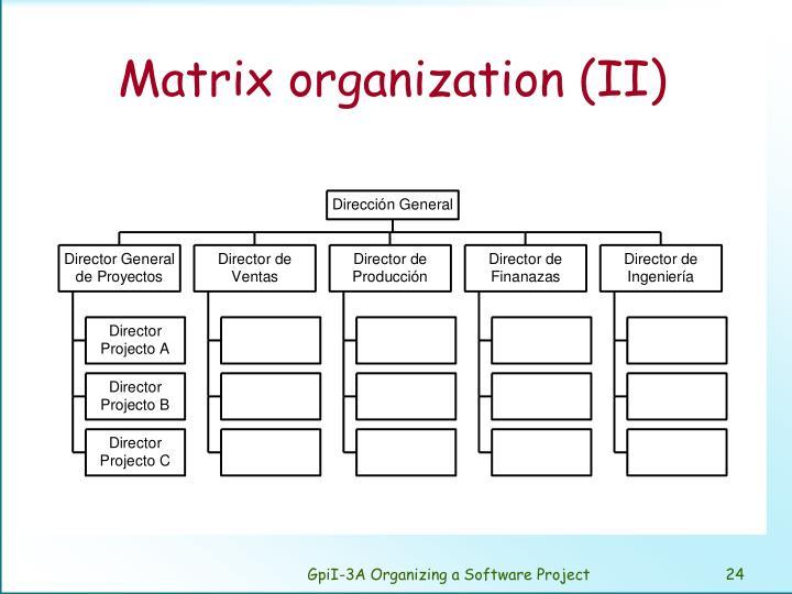 Matrix organization (II)