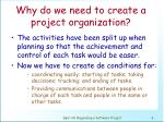 why do we need to create a project organization