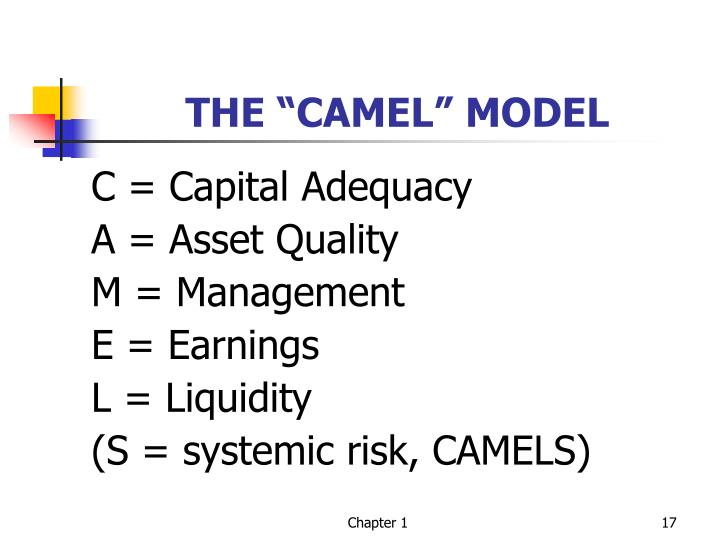 "THE ""CAMEL"" MODEL"