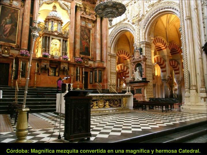 Córdoba: Magnífica mezquita convertida en una magnífica y hermosa Catedral.