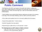 public comment1