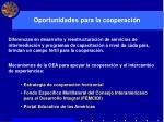 oportunidades para la cooperaci n