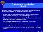 programas de capacitaci n laboral1