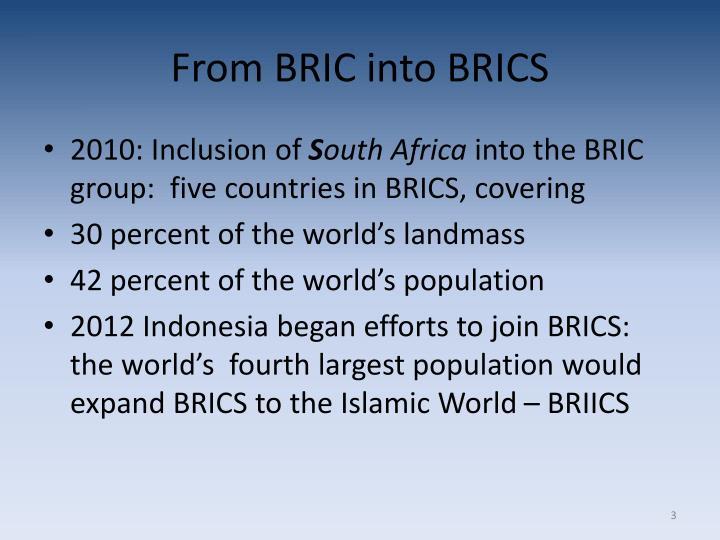 From BRIC into BRICS