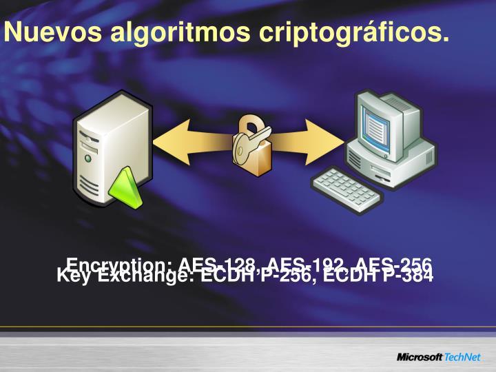 Nuevos algoritmos criptográficos.