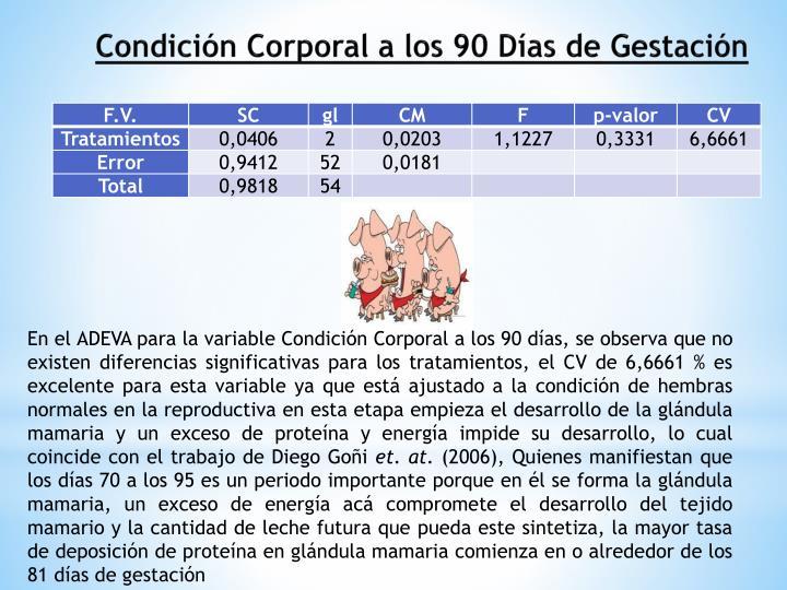 Condición Corporal a los 90 Días de Gestación