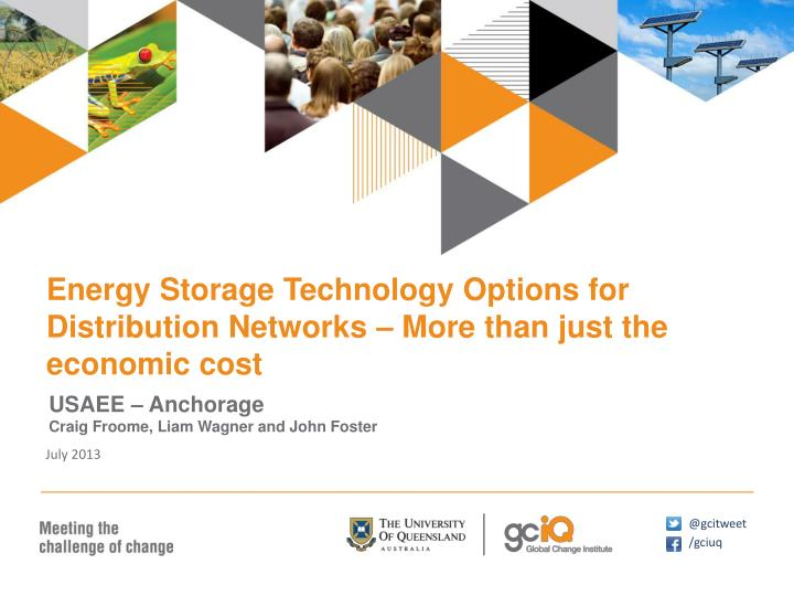 Energy Storage Technology Options for Distribution Networks – More than just the economic cost