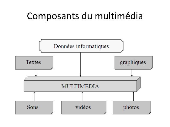 Composants du multimédia