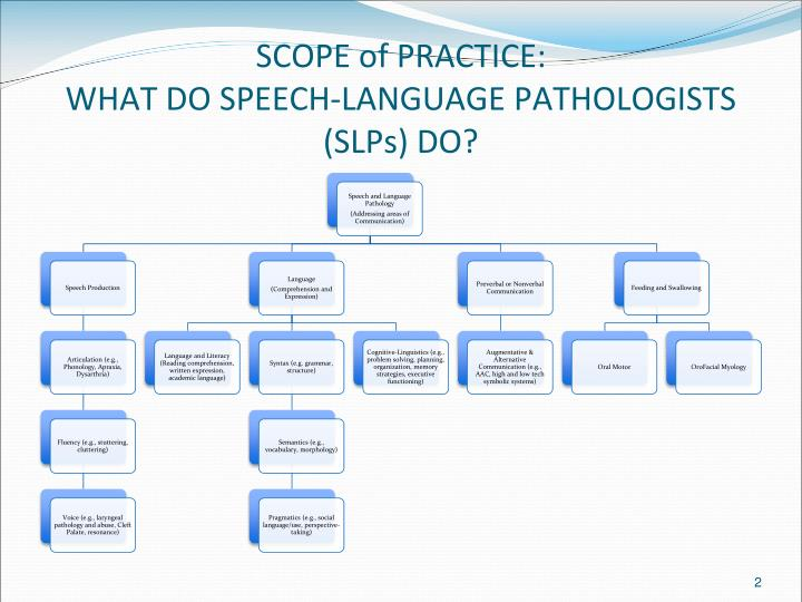 Scope of practice what do speech language pathologists slps do