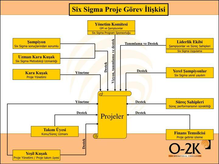 Six Sigma Proje Görev İlişkisi